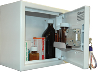 Controlled Drugs Cabinet 11 Litre 250mm (H)